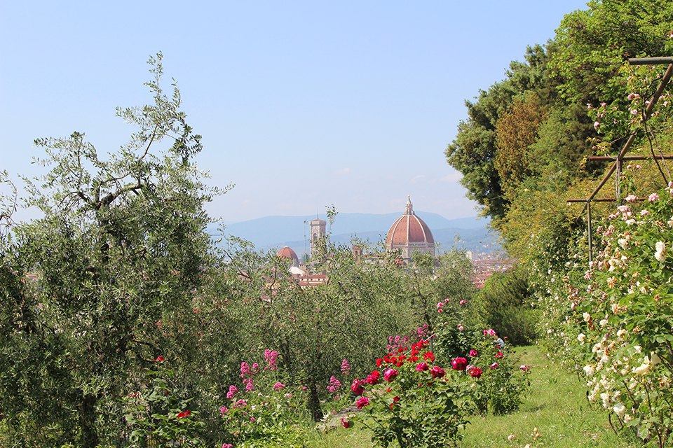 Panorama dal Giardino delle Rose