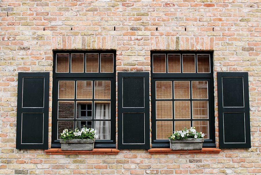 finestre su Damme 2