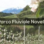 Cosa fare in Trentino: Parco Fluviale Novella