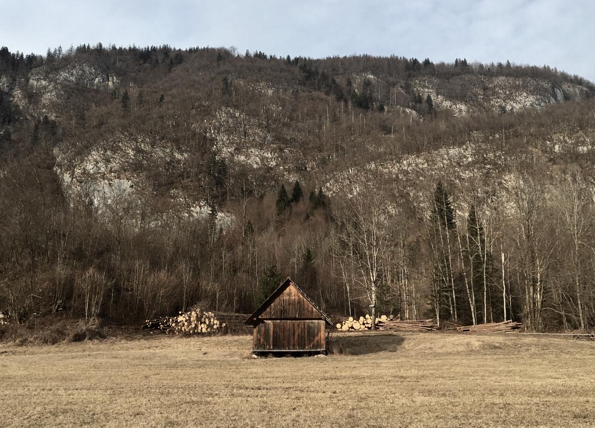 perdersi in Slovenia