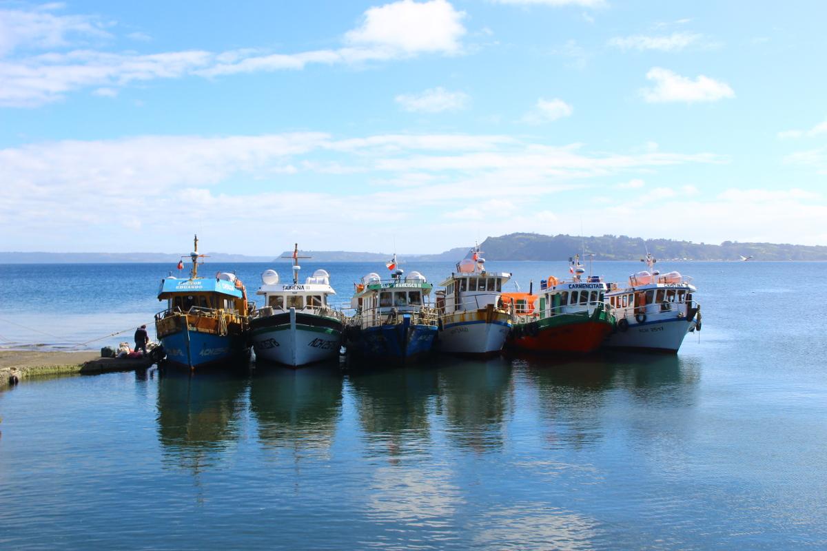 barche chiloé