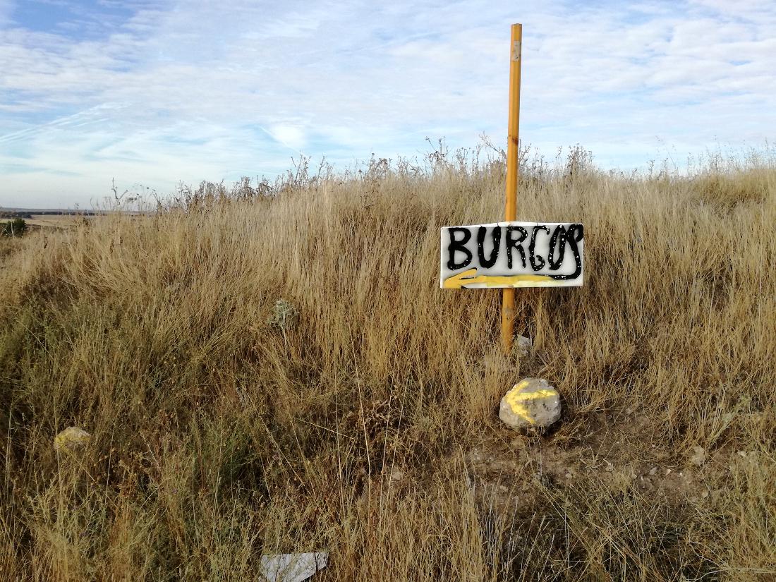 tappe cammino di santiago: Burgos
