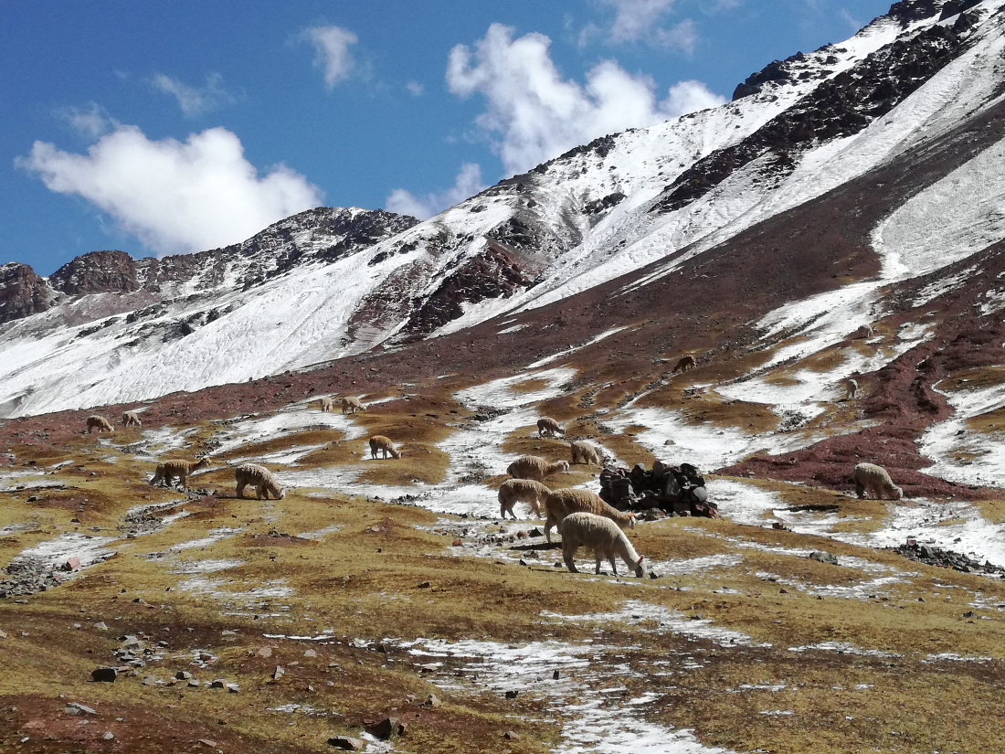 escursione montagna colorata perù