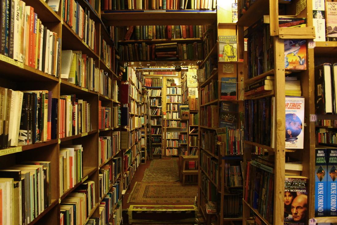 liberie a edimburgo armchair books