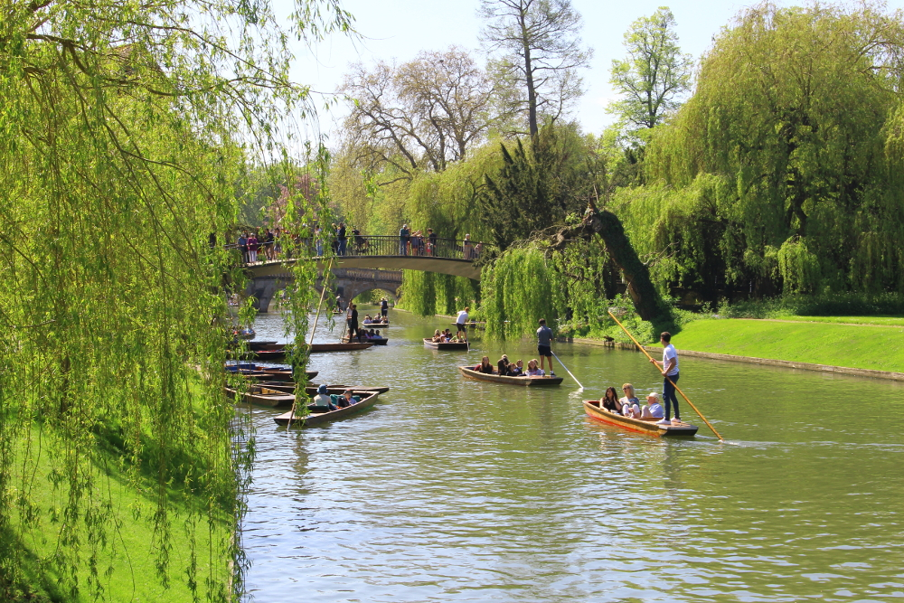 cosa fare a Cambridge: punting