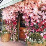posti instagrammabili a Londra: ivy chelsea garden