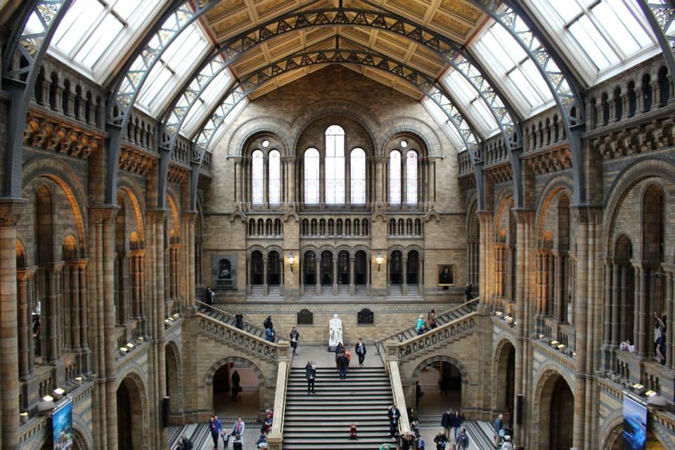 musei gratis a londra: museo di storia naturale