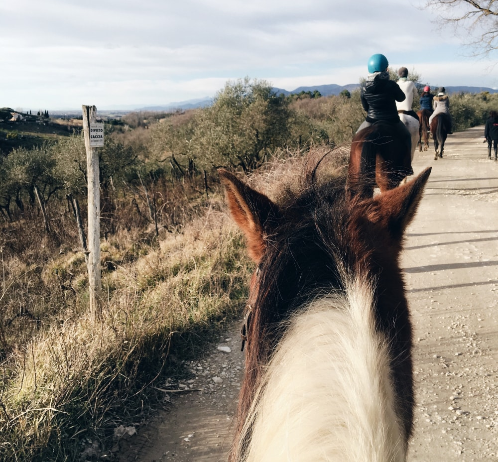 Valdera equitazione