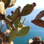 Weekend in Sicilia: cosa vedere e info pratiche