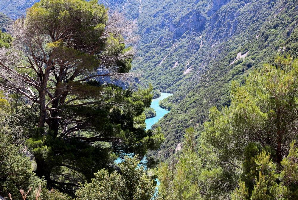 viaggio in provenza: gole del verdon