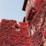 Autunno in Toscana: qualche idea e tante foto