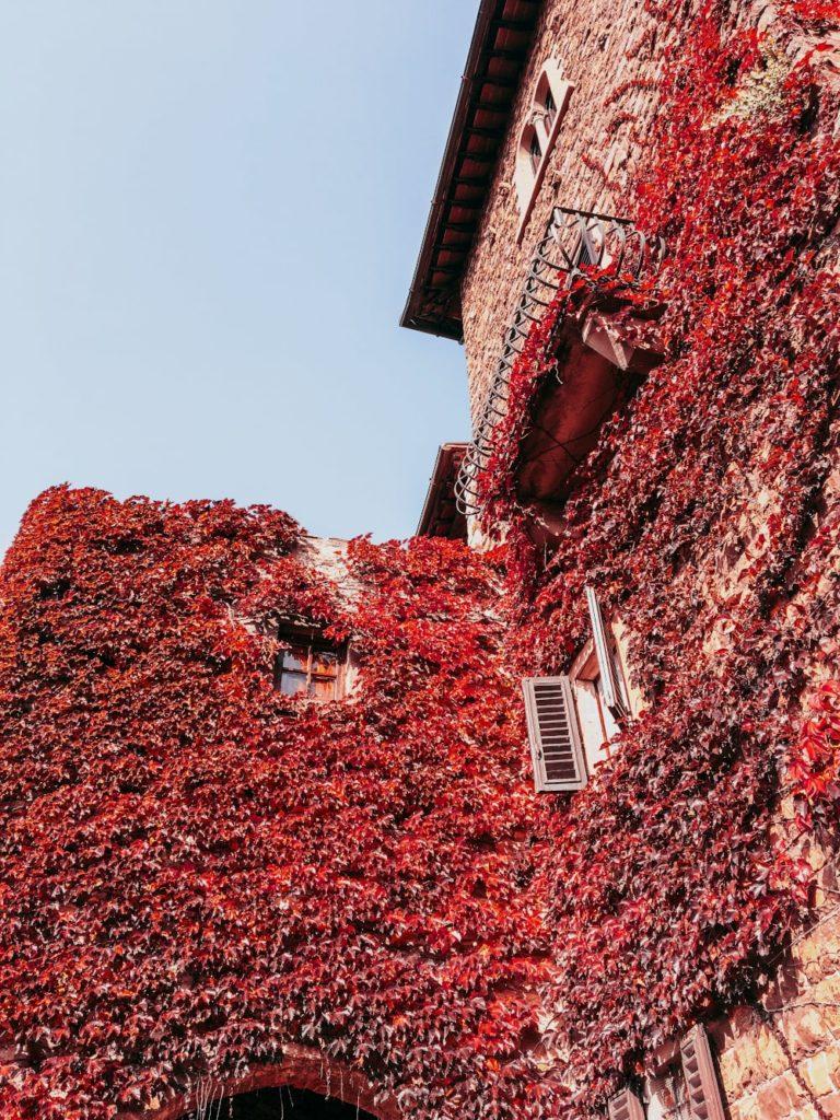 montefiorealle autunno